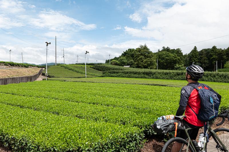 旧街道サイクリングの旅 vol.4 旧東海道をゆく