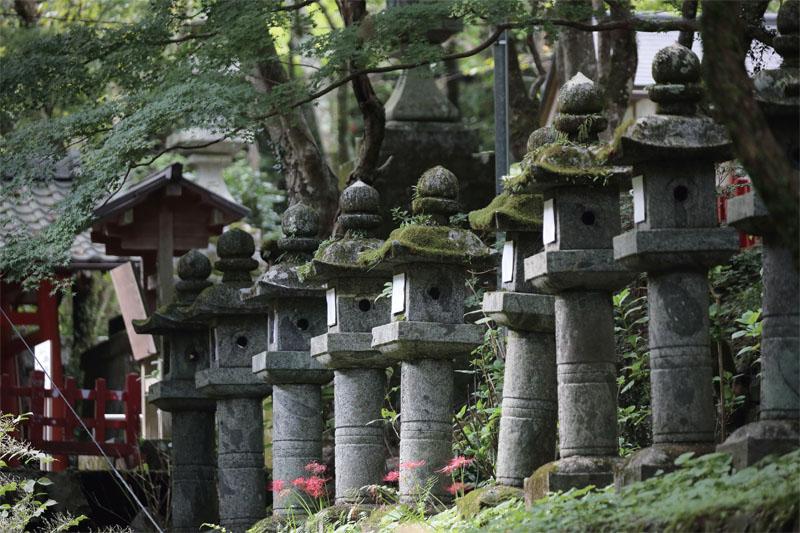 関西ヒルクライムコースガイド奈良