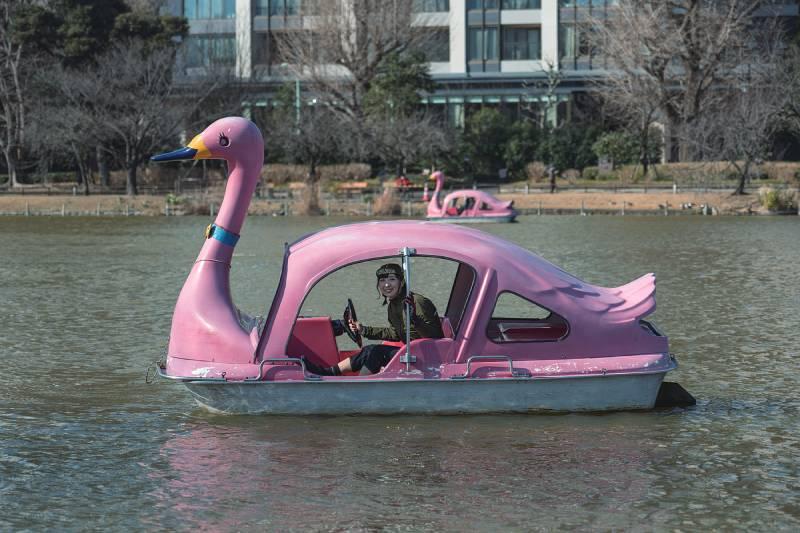 不忍池でスワンボートを体験